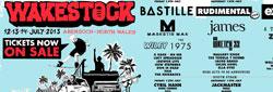Wakestock Festival 2013